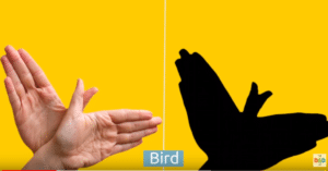 Activité enfant: faire des ombres chinoises avec ses mains 13